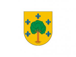 Bandera Amasa-Villabona