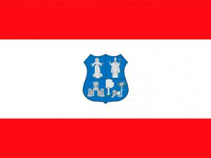 Bandera Asunción