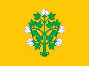 Bandera Bormla