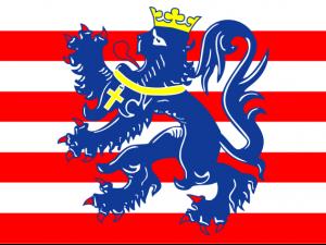 Bandera Brujas
