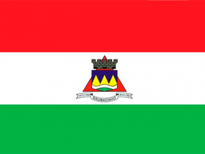Bandera Brumadinho