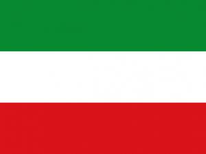 Bandera Calarcá (Quindío)