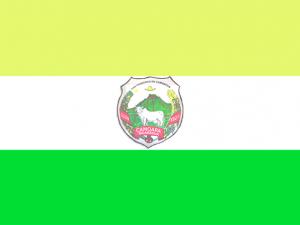 Bandera Camoapa