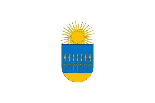 Bandera Cendea de Olza