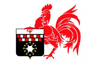 Bandera Charleroi