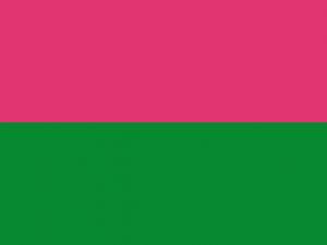 Bandera Circasia (Quindío)