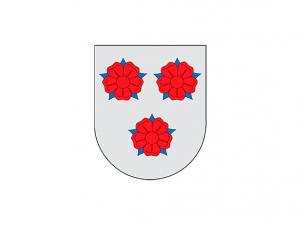 Bandera Cizur