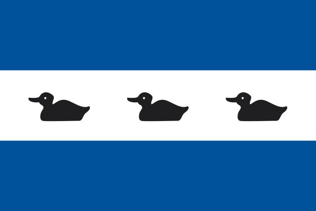 Bandera Diemen
