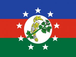 Bandera Estado Chin