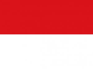 Bandera Funza (Cundinamarca)