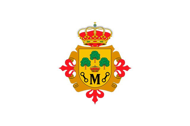 Bandera Manzanares (Ciudad Real)