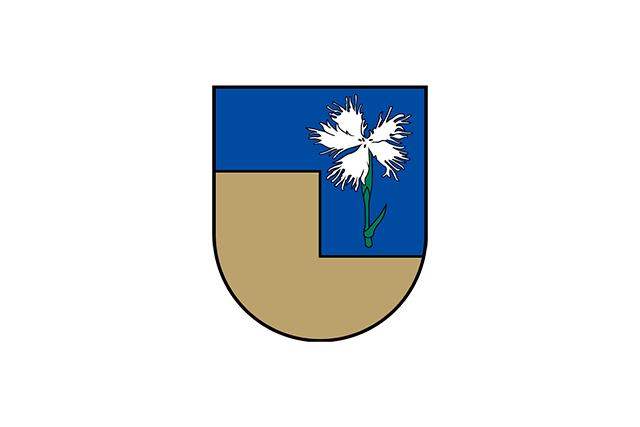Bandera Mazsalaca