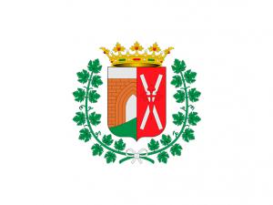 Bandera Miguel Esteban