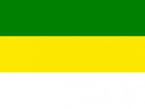 Bandera Nariño (Antioquia)