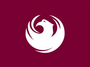 Bandera Phoenix (Arizona)