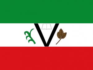 Bandera Piedecuesta (Santander)