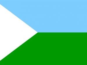 Bandera Puerto Nariño