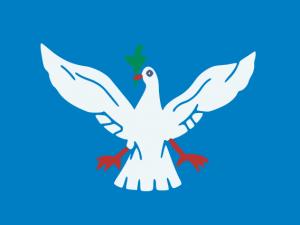Bandera Salvador (Bahía)