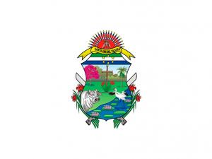Bandera Santa Ana del Yacuma