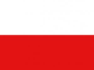 Bandera Soacha
