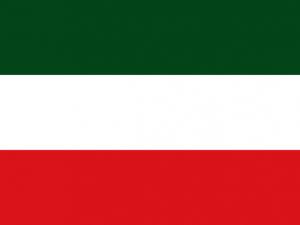 Bandera Tame (Arauca)