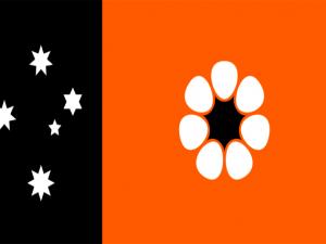Bandera Territorio del Norte
