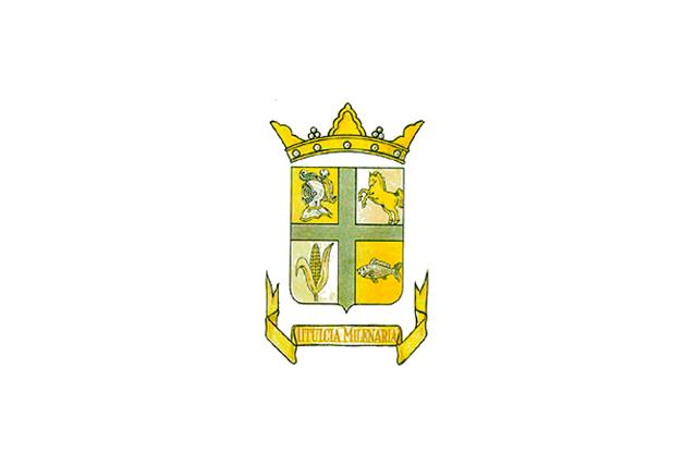 Bandera Titulcia