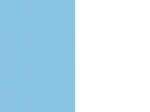 Bandera Uccle