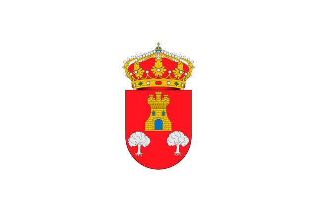 Bandera Villanubla