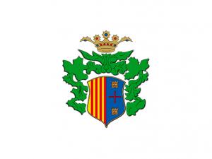 Bandera Villanueva del Río Segura