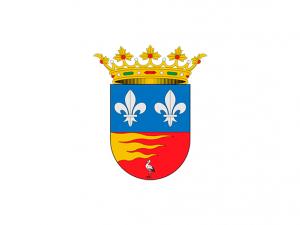 Bandera Ciguñuela