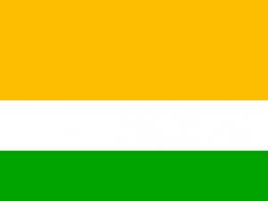 Bandera Acacías (Meta)