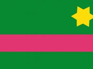 Bandera Baranoa