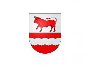Bandera Bulle (Friburgo)