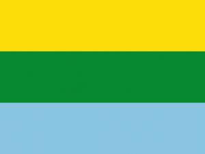 Bandera Calamar (Guaviare)