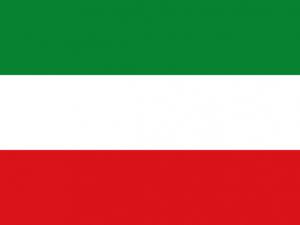 Bandera Campoalegre