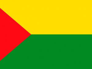 Bandera Chaparral (Tolima)