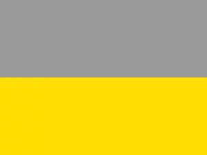 Bandera Condoto
