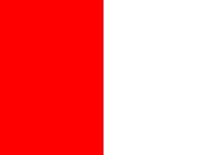 Bandera Cork