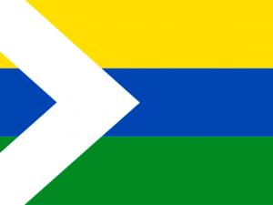 Bandera Cumaribo