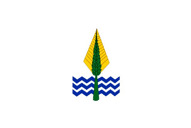 Bandera Gobernación del Nuevo Valle