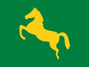 Bandera Gobernación Oriental