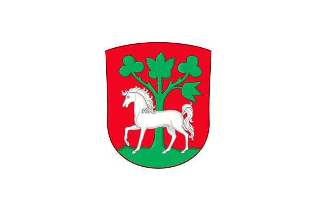 Bandera Horsens