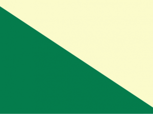 Bandera Huánuco