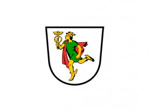 Bandera Idrija
