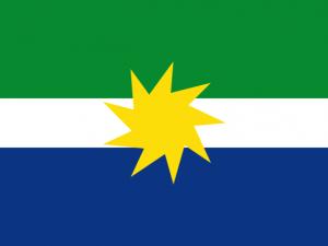 Bandera La Primavera (Vichada)