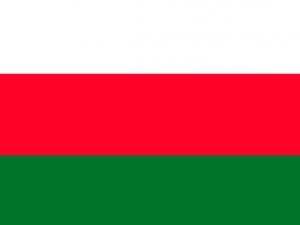 Bandera Laja (Bolivia)