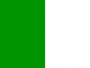 Bandera Limerick