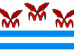 Bandera Litvínovice