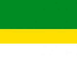 Bandera Madrid (Cundinamarca)